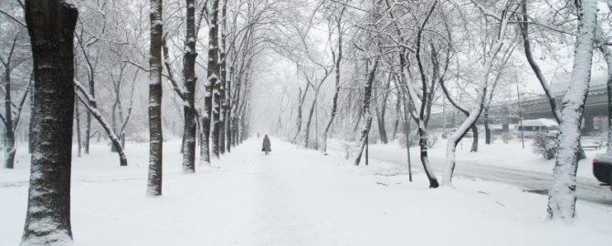 Leiden Sie Unter Winterdepressionen? Finden Sie Es Heraus!